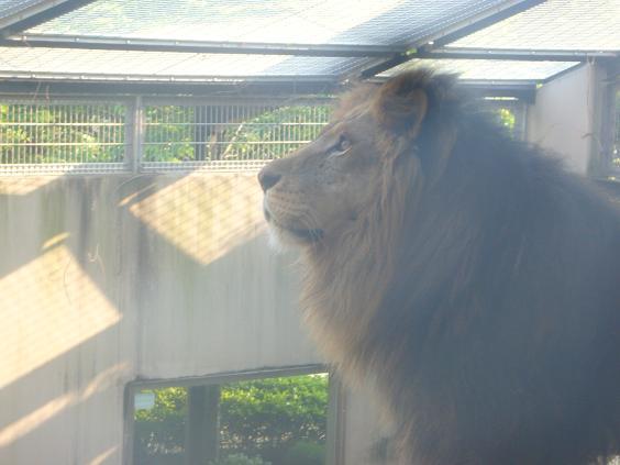 zoo 009.jpg